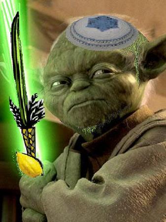 """""""Yoda Joods houden"""""""